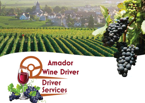 sutter creek amador wine country driver