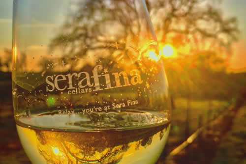 wine tasting rooms and amador wine country wineries - sera fina cellars