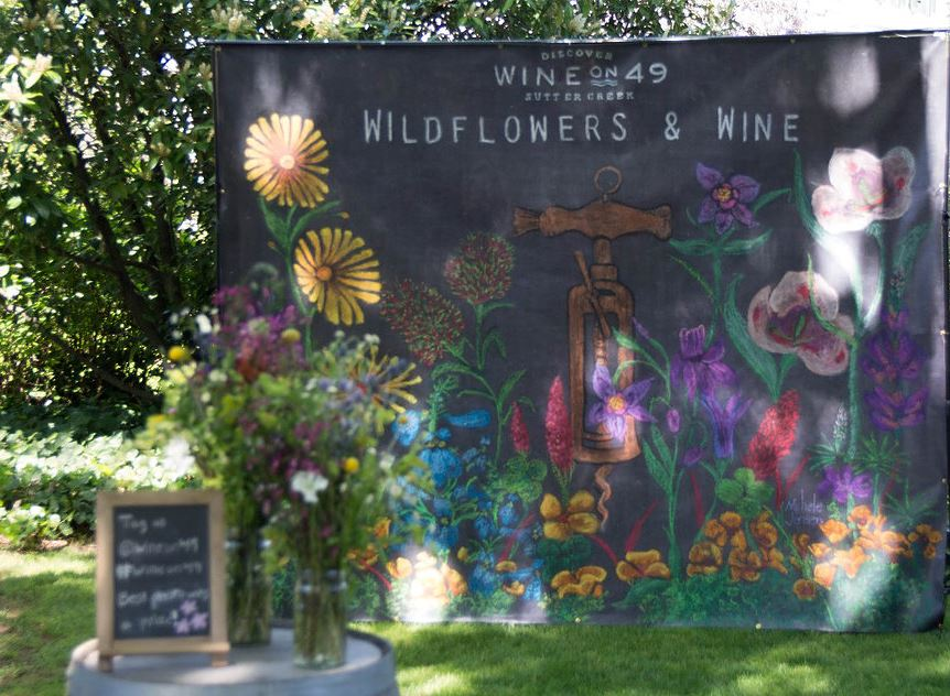 sutter creek wildflowers and wine event