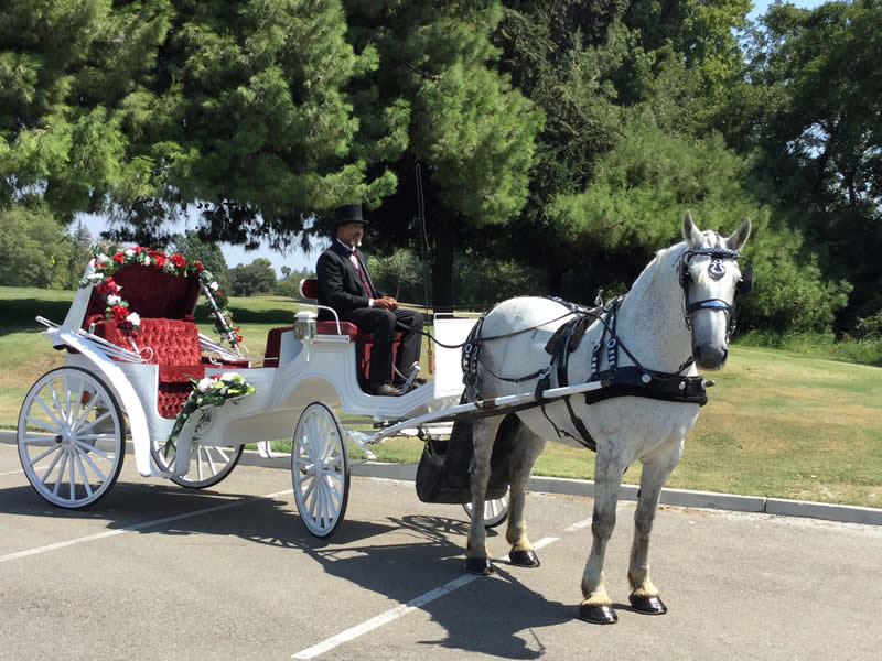 sutter creek mothers day carriage rides