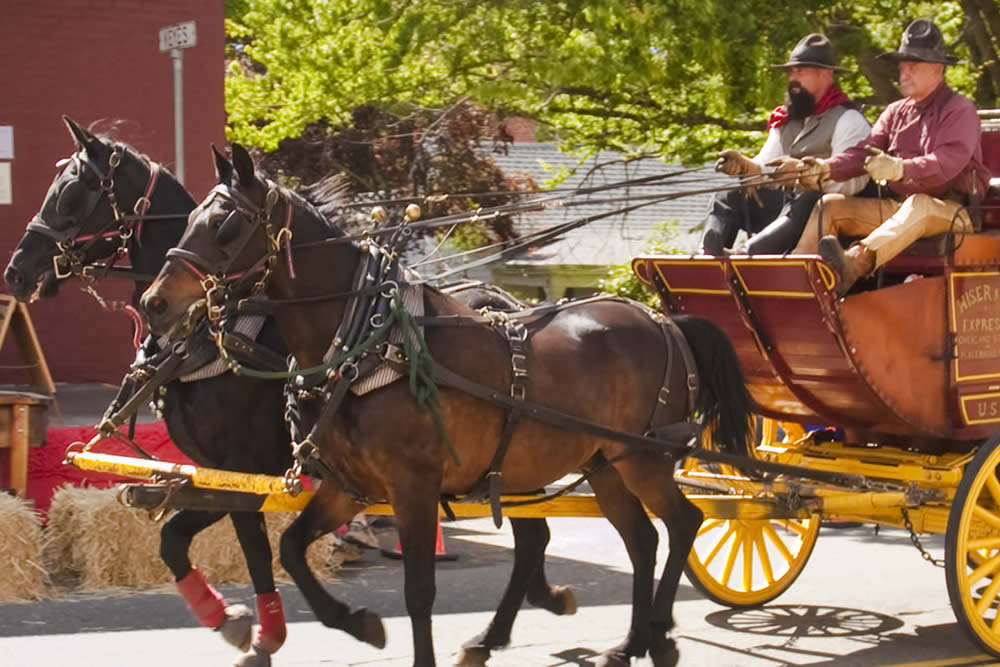 Heritage Days Festival – A Sutter Creek Special Event!