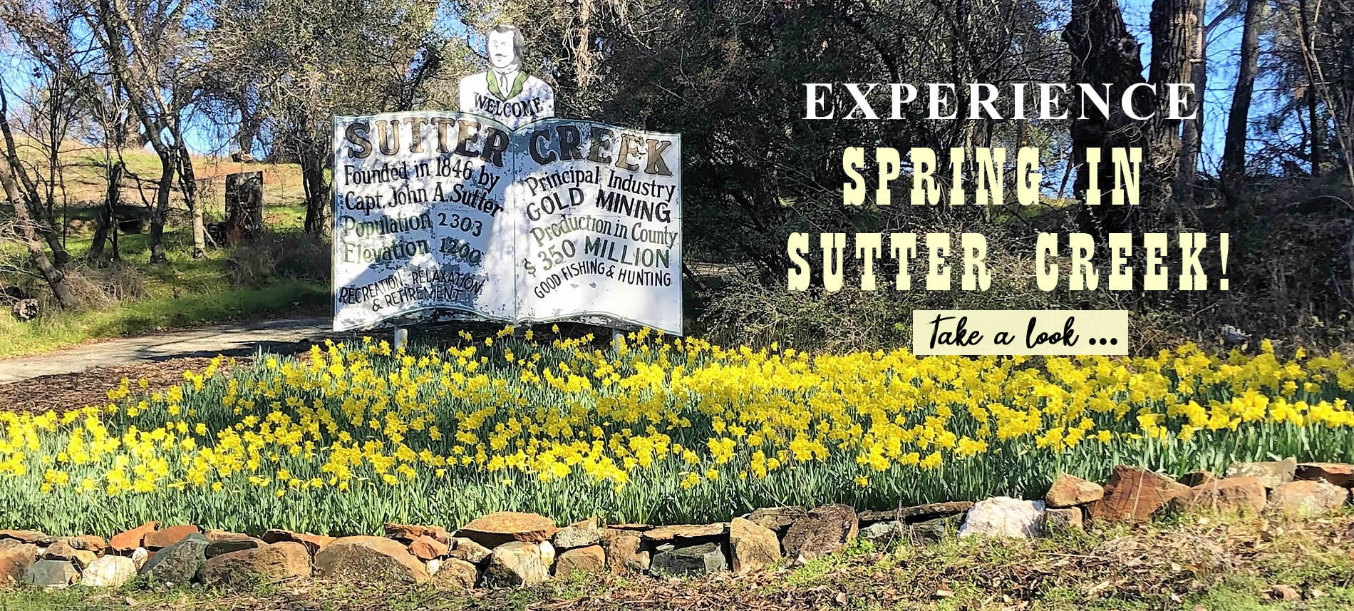 flowers greet visitors in sutter creek