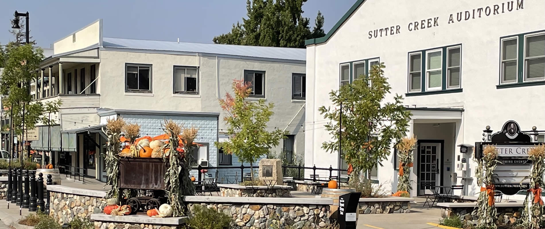 fall colors at sutter creek city hall